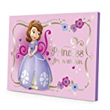 Amazon Price History for:Disney Sofia the First LED Canvas Wall Art, 15.75-Inch x 11.5-Inch