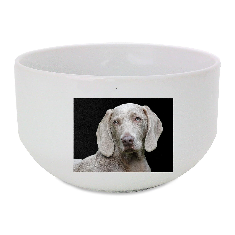 Perros, Weimaraner, vertical, acceso remoto bol de cerámica ...