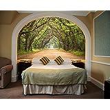 Startonight Mural Wall Art Photo Decor Trees Tunnel Medium 4-feet 2-inch By 6-feet Wall Mural for Living Room or Bedroom