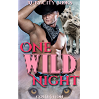 One Wild Night Collection (English Edition)