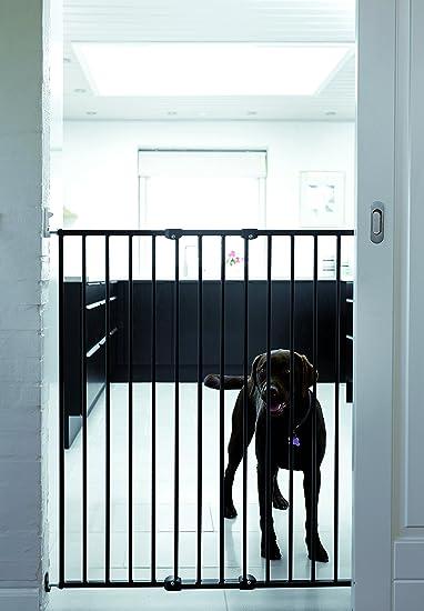 Baby Dan 57616-2600-06 - Vallas, Color Negro: Amazon.es: Productos para mascotas