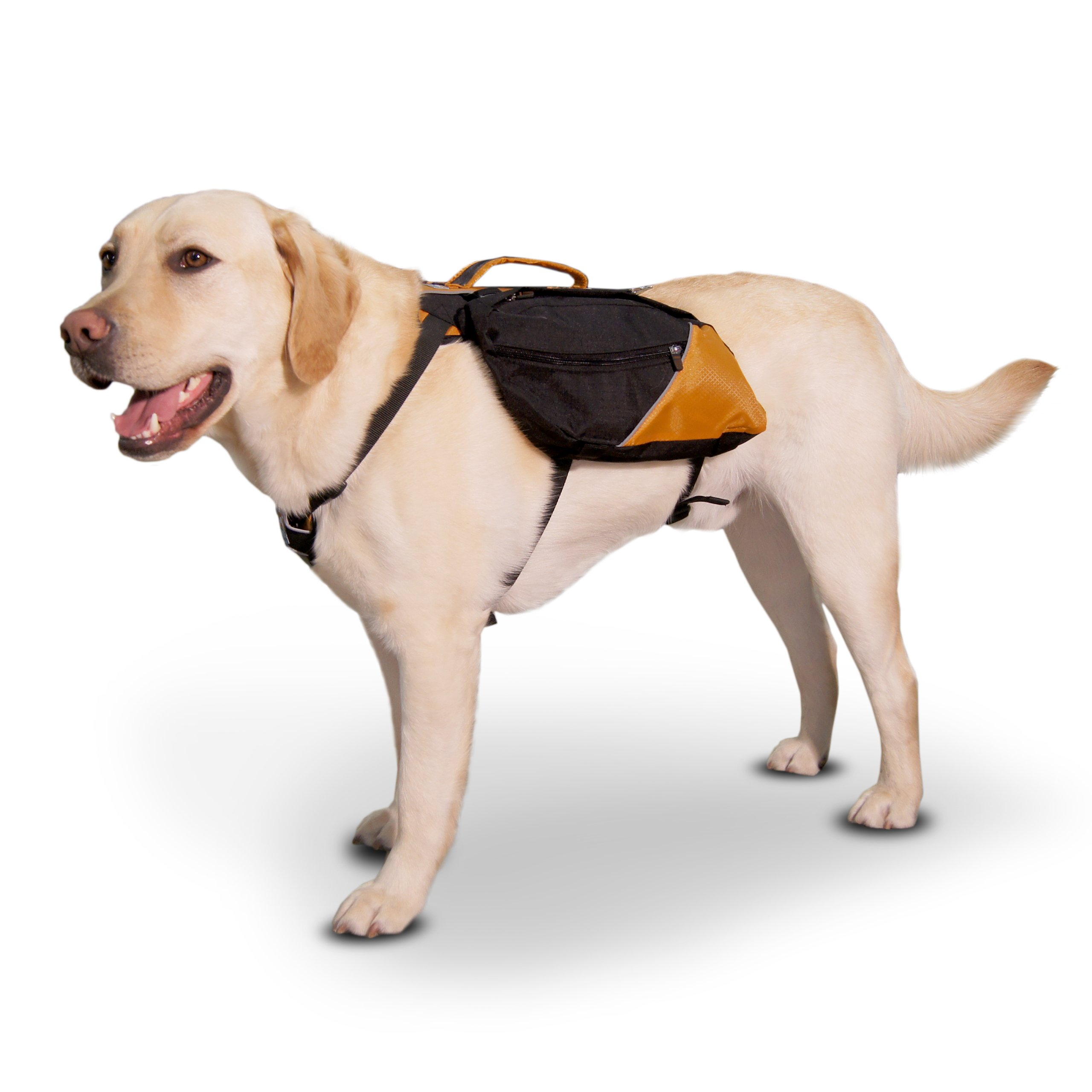 Kurgo Baxter (TM) Dog Backpack for Hiking, Walking or Camping, Black / Orange