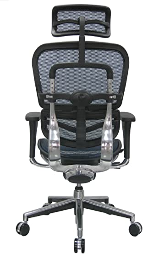 Eurotech Ergohuman Mesh Ergonomic Chair w/ Headrest