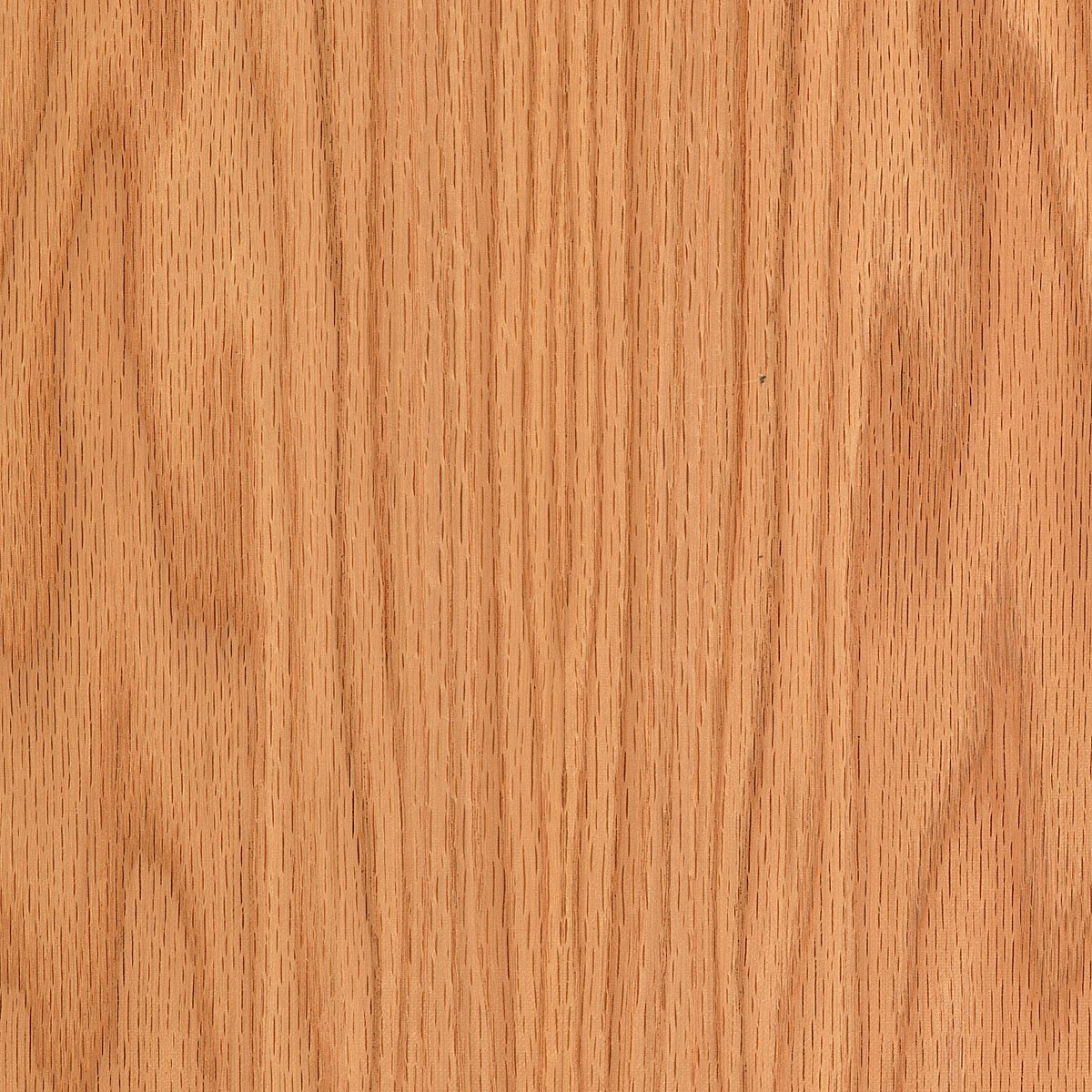 Red oak wood veneer plain sliced mil sheet ebay