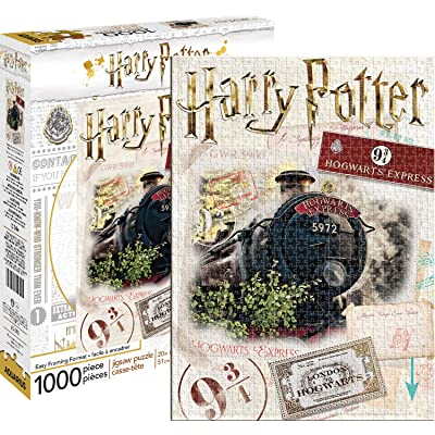 Harry Potter Ticket 1,000pc Puzzle, Multicolor: Toys & Games