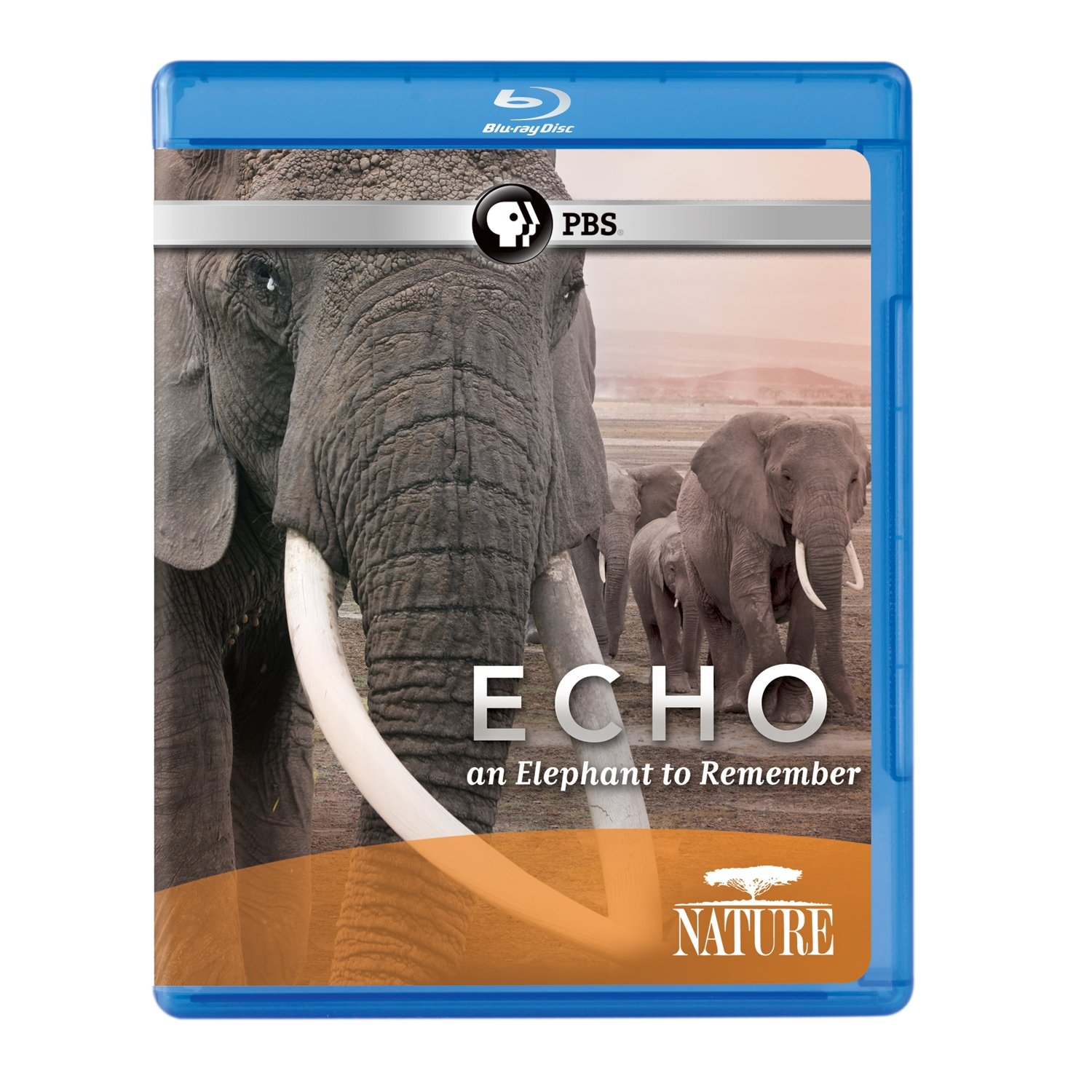 Blu-ray : Echo: An Elephant To Remember (Blu-ray)