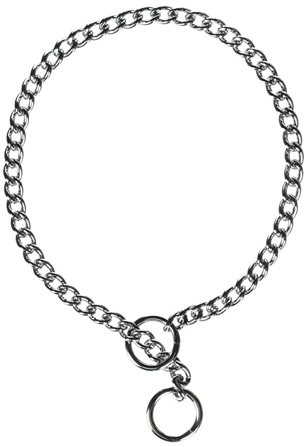 Amazon Com Coastal Pet Chrome Plated Chain Choke Training Dog