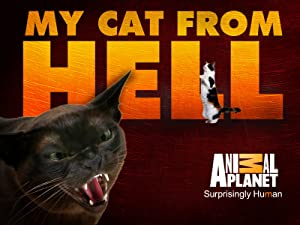 Watch My Cat From Hell Season 1 Prime Video
