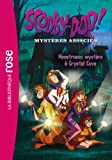 Scooby doo scoubidou coffret 5 figurines articul es en - Jeux de scooby doo crystal cove ...