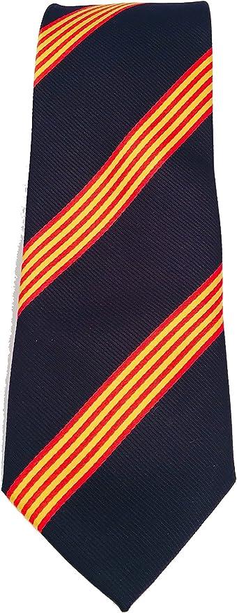 Corbata azul bandera catalana - corbata catalana - corbata bandera catalunya - cataluña - Corbata azul con bandera de cataluña - Petro Baldini: Amazon.es: Ropa y accesorios