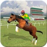 type rider - Horse Racing 2016