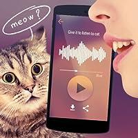 Traductor para gatos Simulador