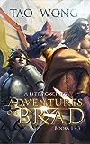 Adventures on Brad Books 1 - 3: A LitRPG Fantasy Series