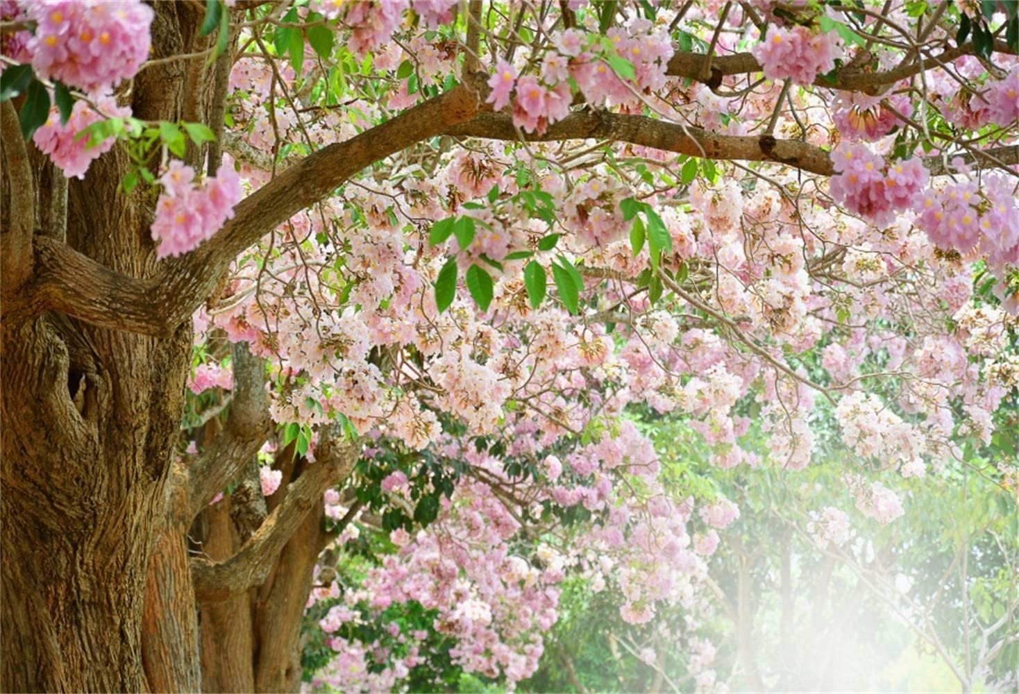 Pink Flowers Blooming Trees Backdrop 10x6.5ft Polyester Romantic Floral Trees Green Leaves Hazy Fog Floral Path Background Bridal Shower Bride Groom Portrait Shoot Banner Wedding Photo Booth