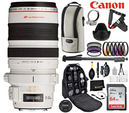 3c6513489ca2 Amazon.com : Canon EF 28-300mm f/3.5-5.6L is USM Lens with ...