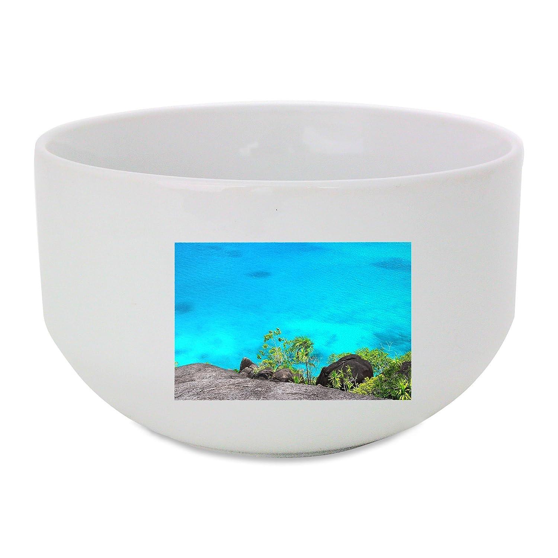 Mar, de arranque, Seychelles, agua, buque bol de cerámica: Amazon ...