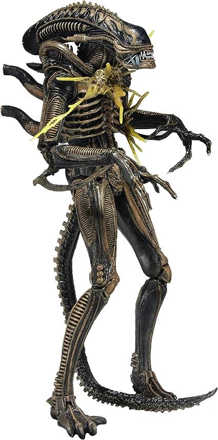 "NECA 7/"" Scale Action Figure Aliens Series 12 Blue Battle Damaged Warrior"