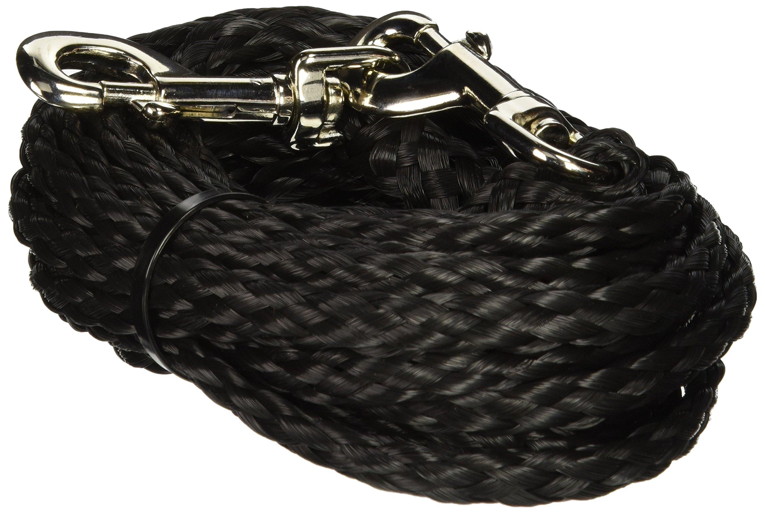 Coastal Pet Products DCP33320BLK Nylon Poly Big Dog Tie Out, 20-Feet, Black by Coastal Pet