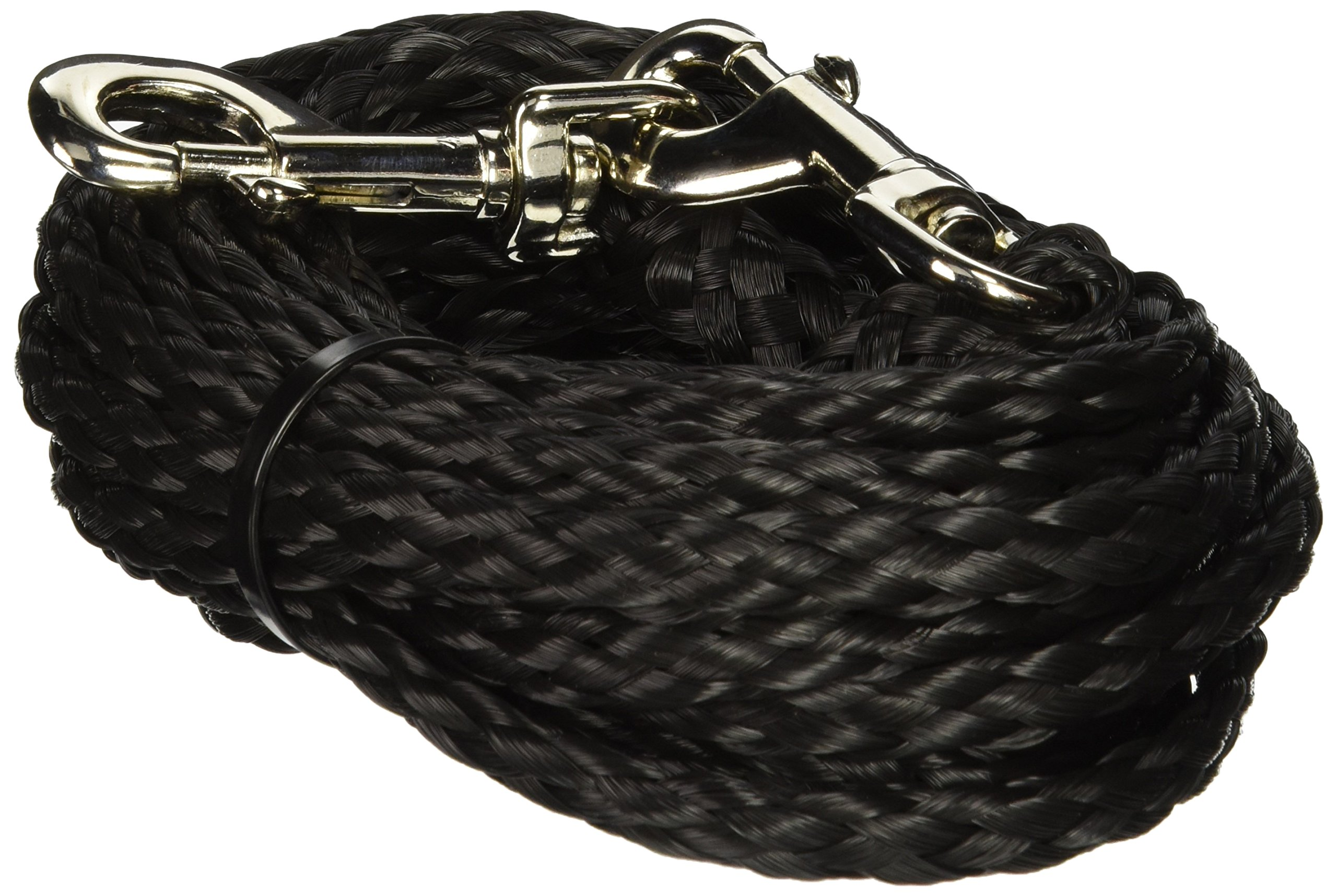 Coastal Pet Products DCP33320BLK Nylon Poly Big Dog Tie Out, 20-Feet, Black