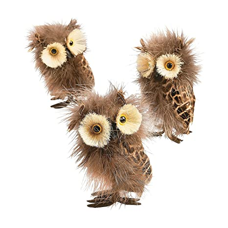 Amazon Com Fun Express Feathered Owl For Fall Craft