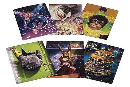 Amazon Avanti Birthday Card Collection Party Animals 6 Count