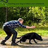 Dog Whistle to Stop Barking, [2 Pack] Adjustable