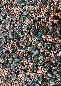 25lb Food Plot Seed Mix | Grain Sorghum Peredovik Sunflowers Red Clover Forage Sorghum Trophy Rape | Birds & The Bees Blend | Turkey Dove Pheasant Quail Deer Ducks Geese Honey Bees