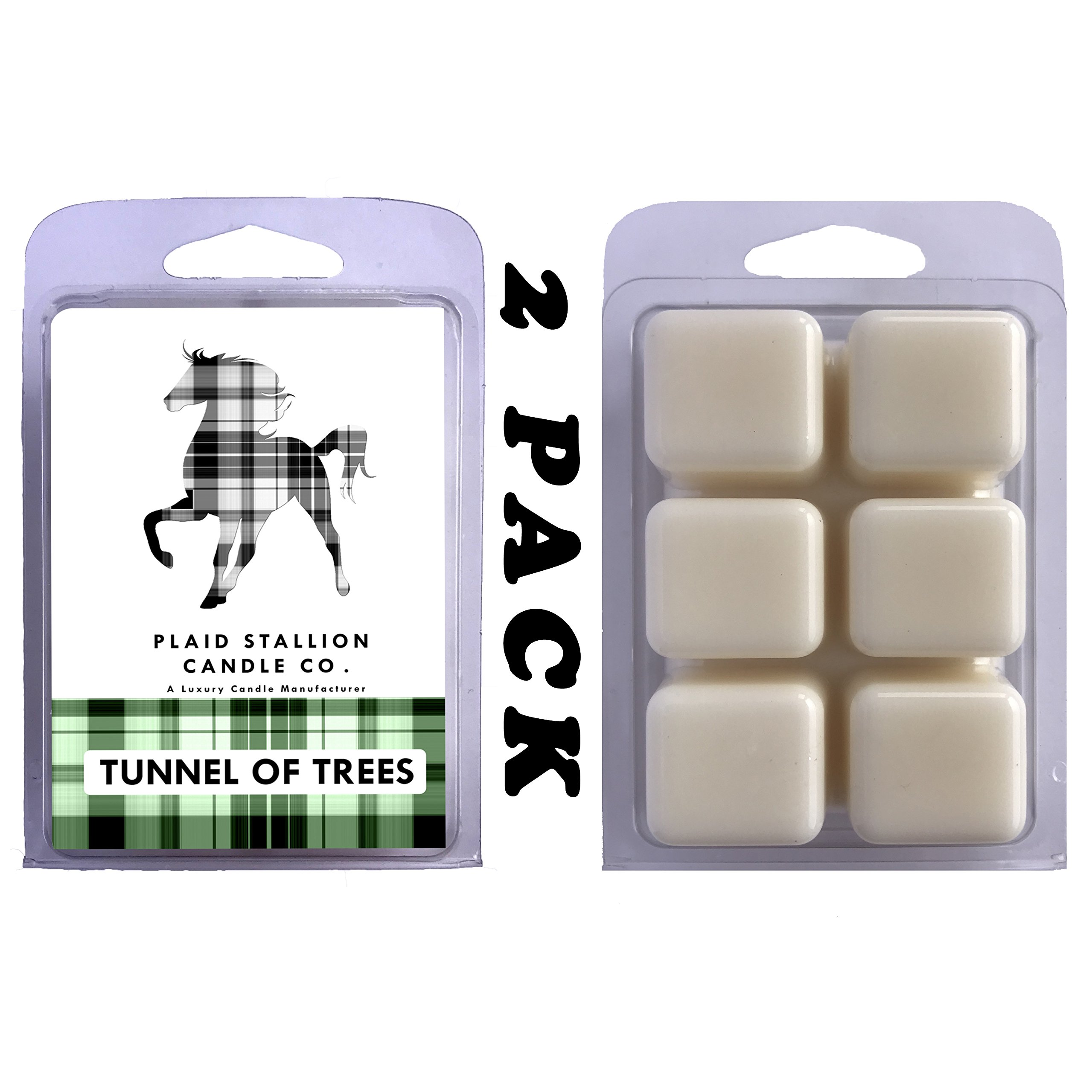 Plaid Stallion Scented Candle Wax Melts | Woods, Cedar, Pine, Trees, Ocean Scent (Tunnel of Trees) | 12 Flameless Candle Wax Cubes, 6.4 Ounces in 2 x 6-Packs