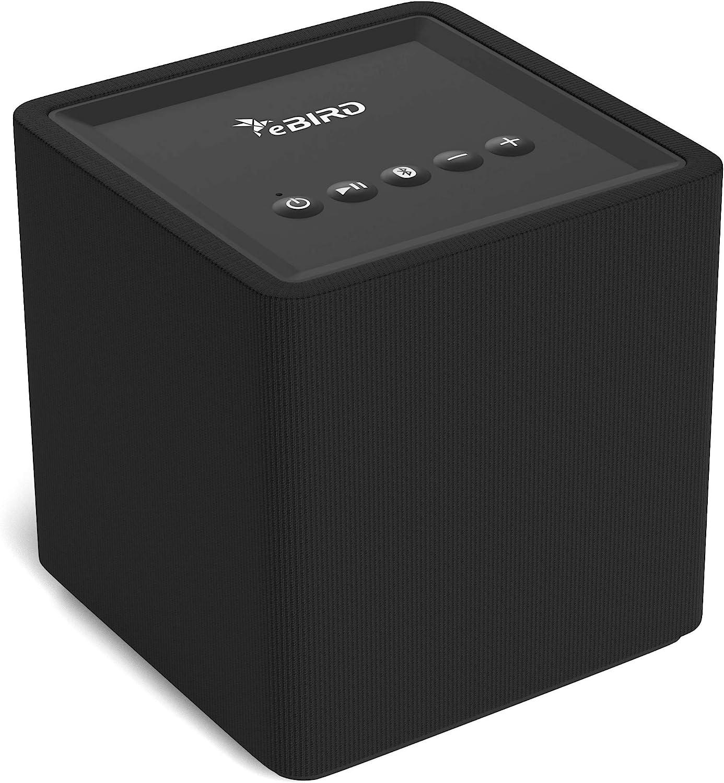 eBIRD Altavoz Inalámbrico WiFi & Bluetooth Multisala   Altavoz Inteligente con Chromecast Integrado   Streaming Musical con Google Home, Spotify Y Otras Apps   10 Watts   Negro