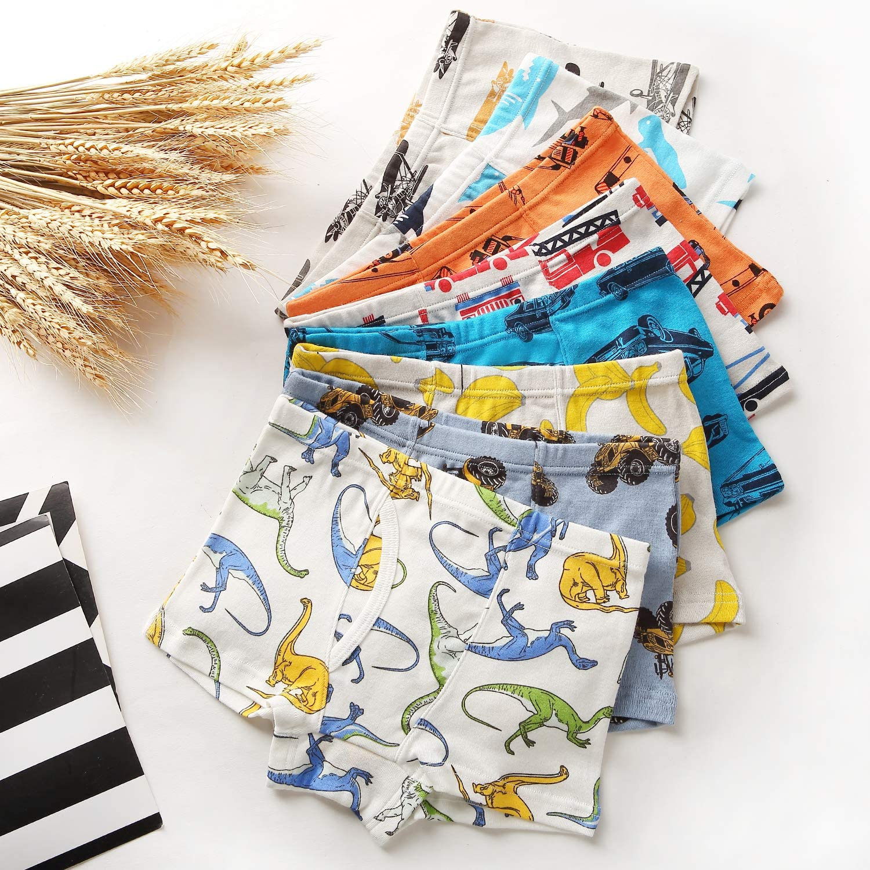 Fenhant Little Boys Soft Cotton Briefs Dinosaur Truck Shark Baby Toddler Kids Underwear 9 Pack