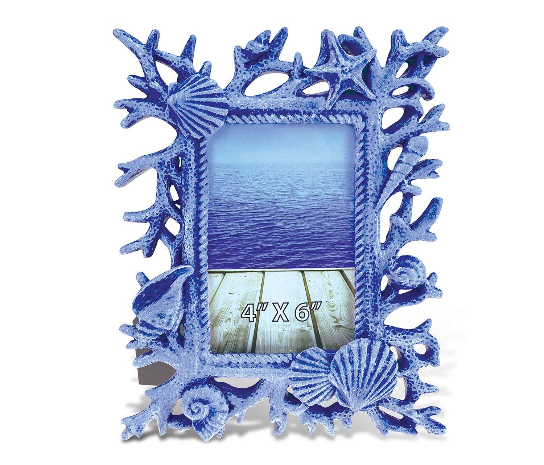 Amazon.de: Verwirrt, blau Muscheln und Korallen Bilderrahmen 10, 2 x ...