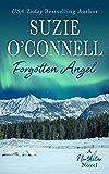 Forgotten Angel (Northstar Book 9)