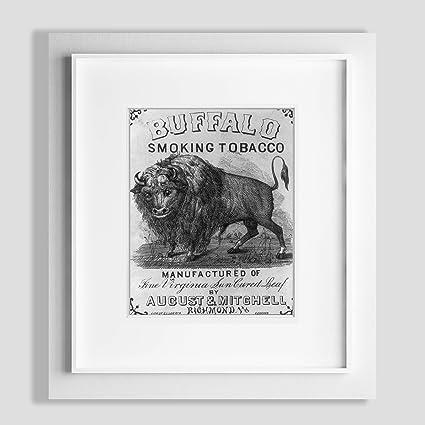Historic Photos 1868 Fotos Buffalo fumar tabaco a búfalo ...