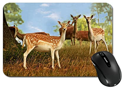 d39dfcee3d39 MSD Large Mouse Pad XL Extended Non-Slip Rubber Extra Large Desk Mat A small