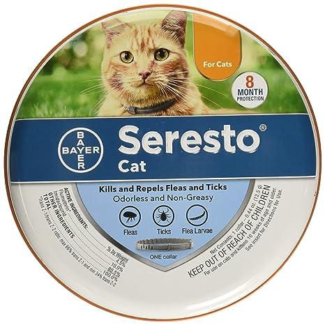 Amazon.com: Bayer Animal Health Seresto - Collar para gatos ...