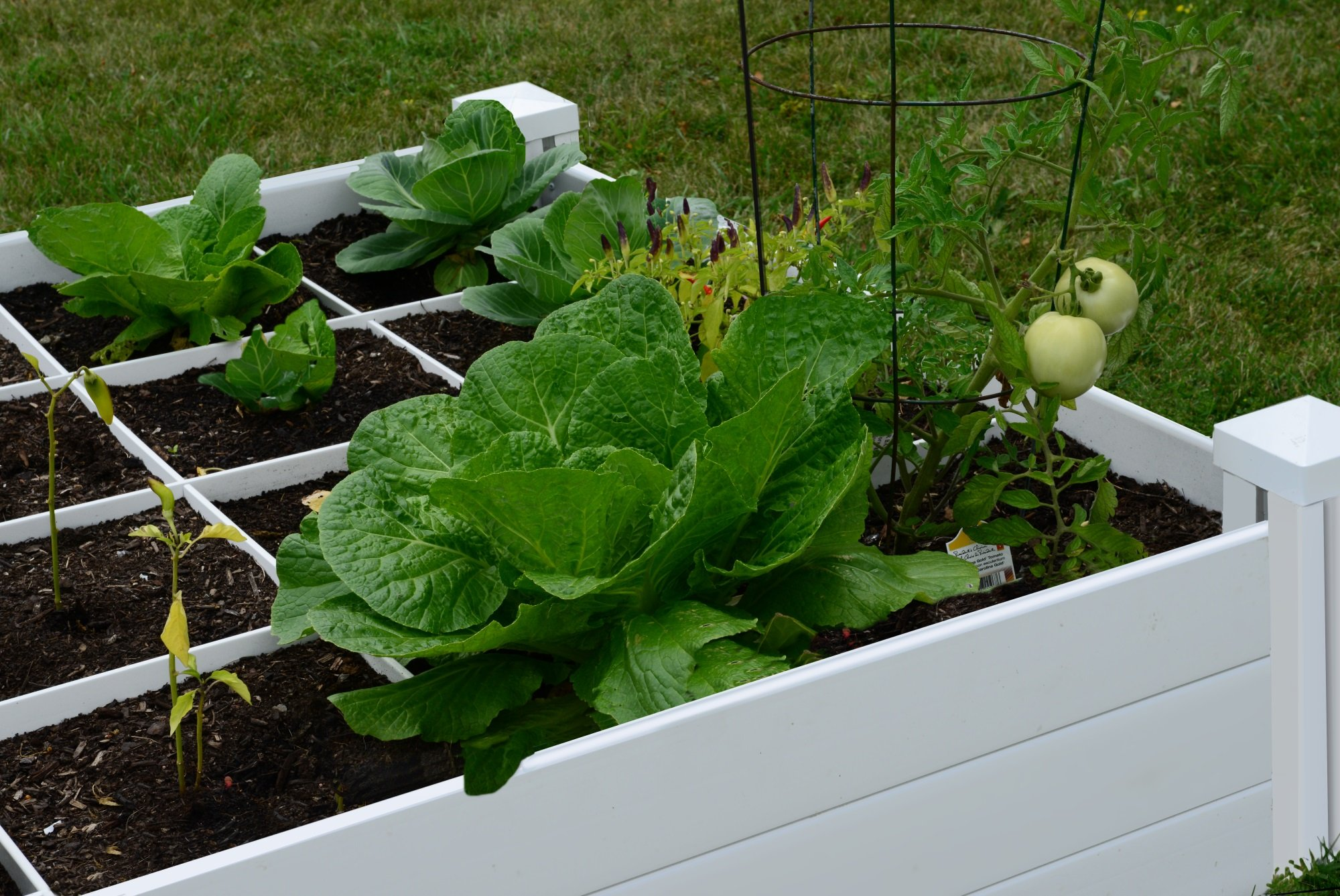 """Vita Gardens VT17104 Vita Bed with GRO 48in x 7.5in Garden with Grid, 7.38"""" H, White 3 Available in classic white Can combine more than one unit Grid system increases yield because plants can be planted closer together"""