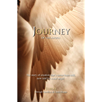 Journey of the Angels: The story of creation that's never been told, now told by a real angel. (English Edition)