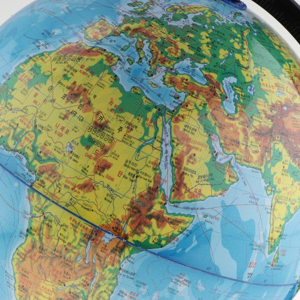 KOREAN World Globe Stand for Home Office Decor Science Education 30cm