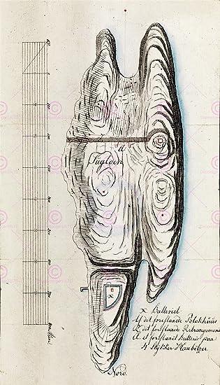 MAP 1806 HEINEN FUGLOYA BATTERY VESTFOLD NORWAY REPLICA POSTER PRINT PAM0262