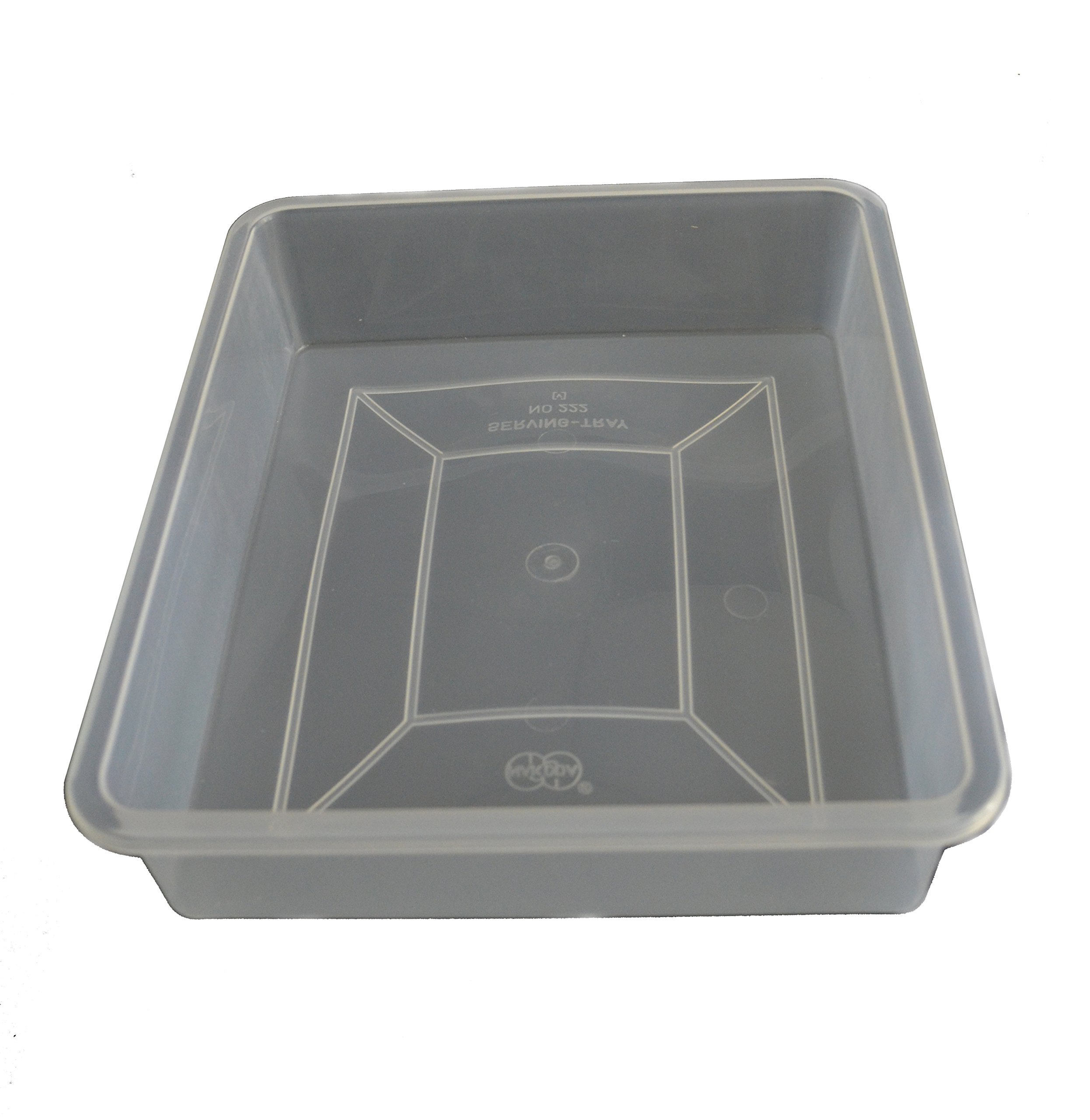 Eisco Labs Plastic Dissection Tray, 22.5 X 25 cm by EISCO