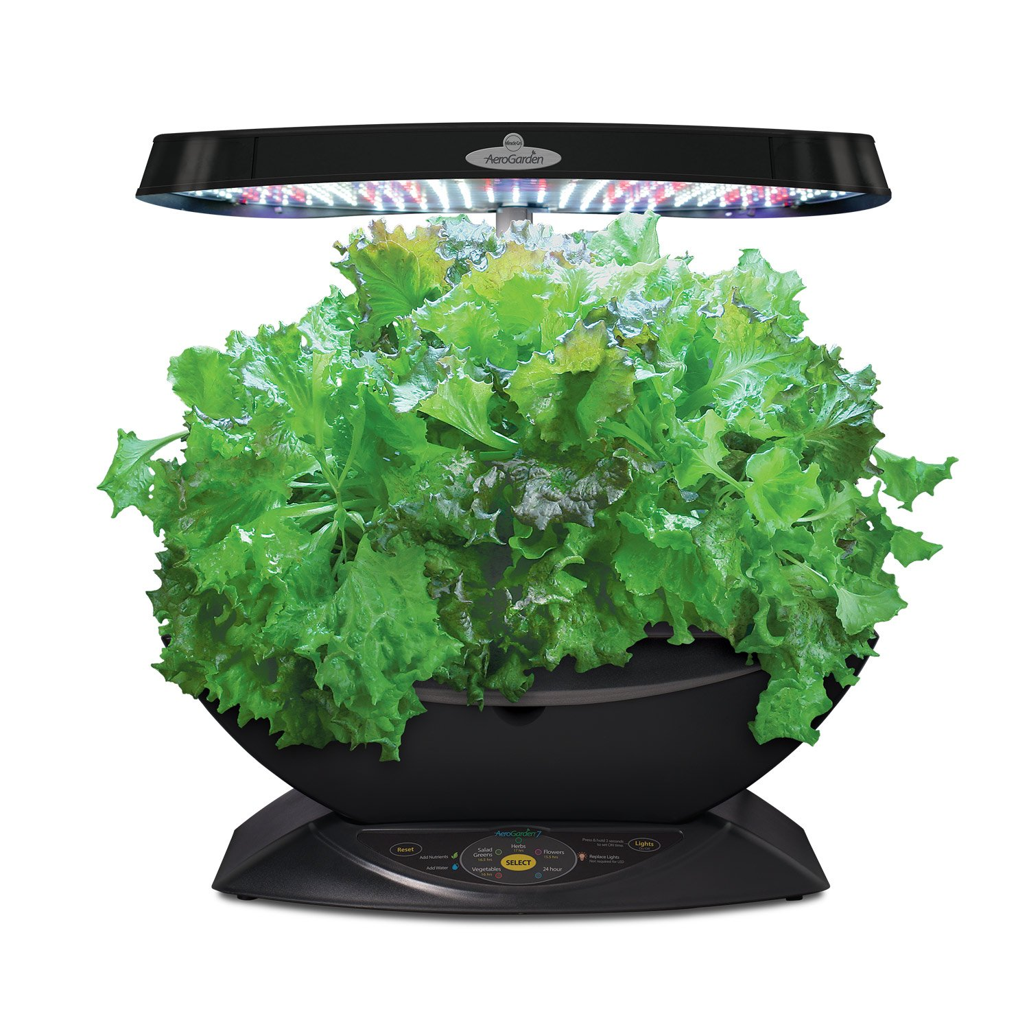 Amazoncom Miracle Gro AeroGarden 7 LED Indoor Garden with