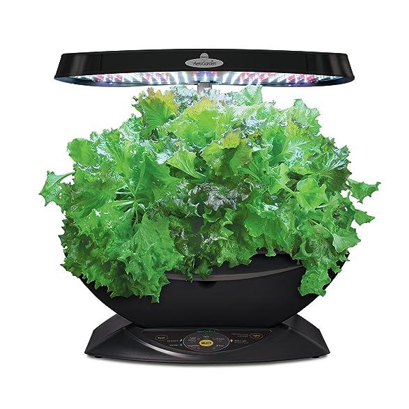 Amazoncom AeroGarden 7 LED Indoor Garden with Gourmet Herb Seed