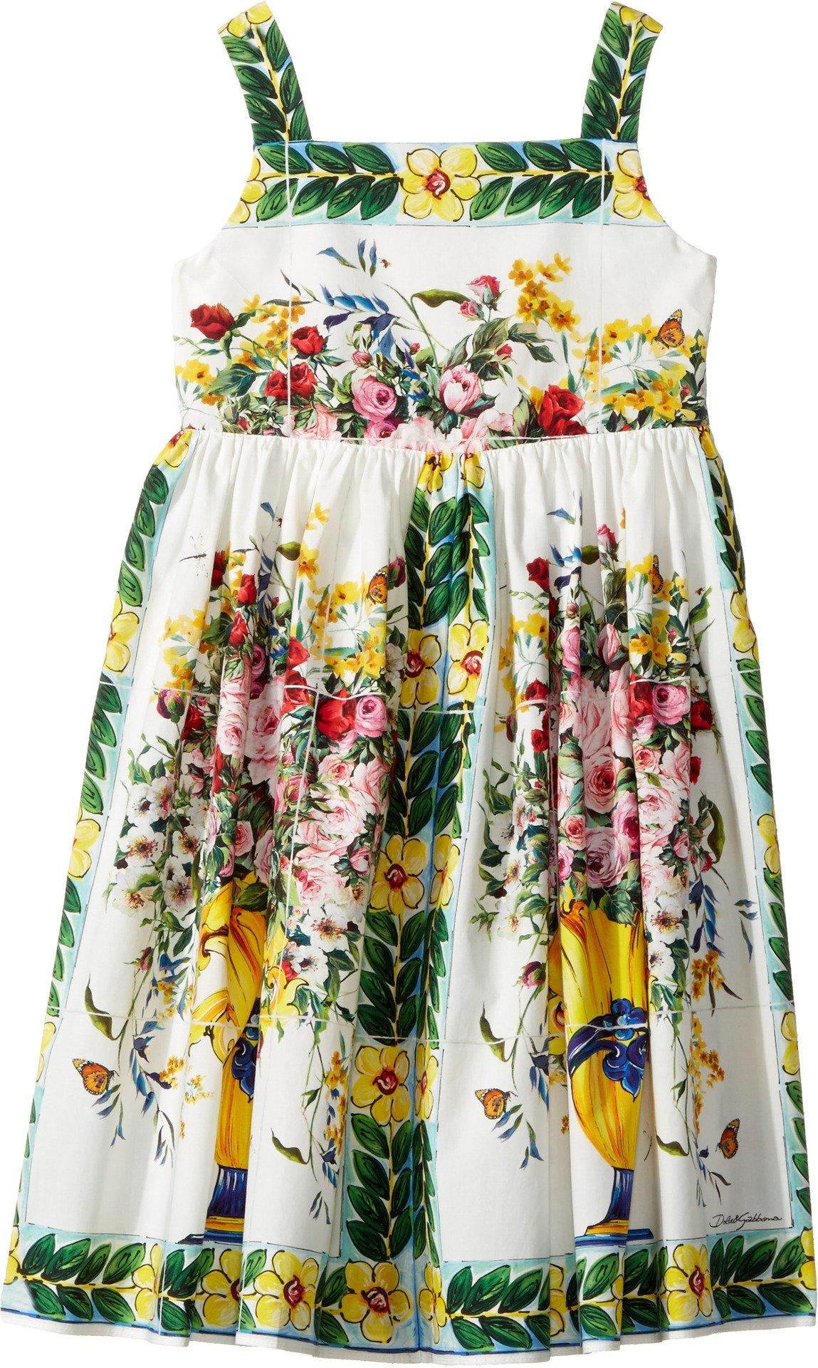 Dolce & Gabbana Kids Baby Girl's Caltagirone Vase Print Poplin Dress (Toddler/Little Kids) Floral Vase Print Dress