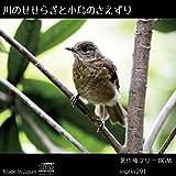 【店舗様向け 著作権フリーBGM】癒しの音、川のせせらぎと小鳥のさえずり【送料無料】