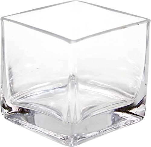 Koyal Wholesale 12-Pack Cube Square Glass Vases, 3 by 3 by 3-Inch