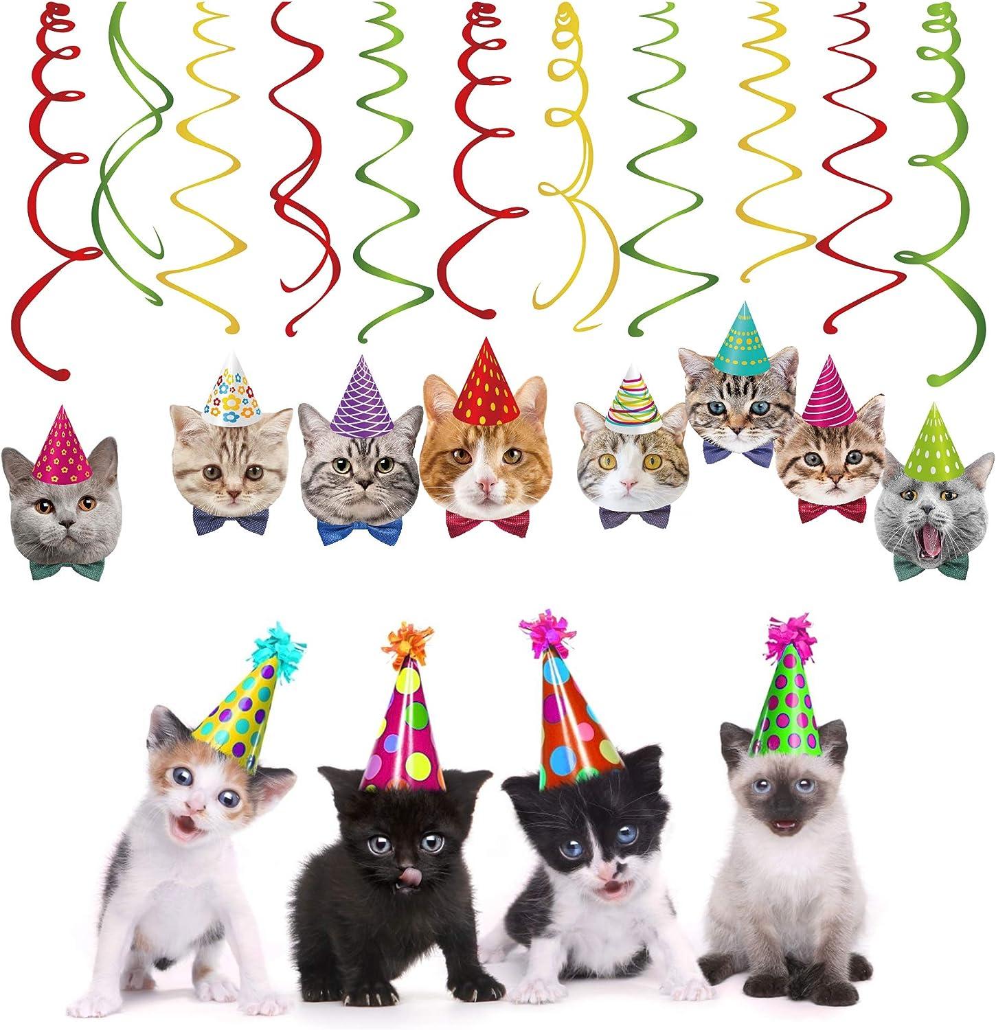 Amazon.com: Gatitos Cumpleaños Gato Cumpleaños Fiesta ...
