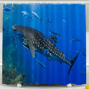 Shorping 78x72 Shower Curtain,Clear Shower Curtain, Large Whale Shark Swimming in Shallow Water Over a Tropical Coral Reef Waterproof Decor Bathroom Set with Hooks