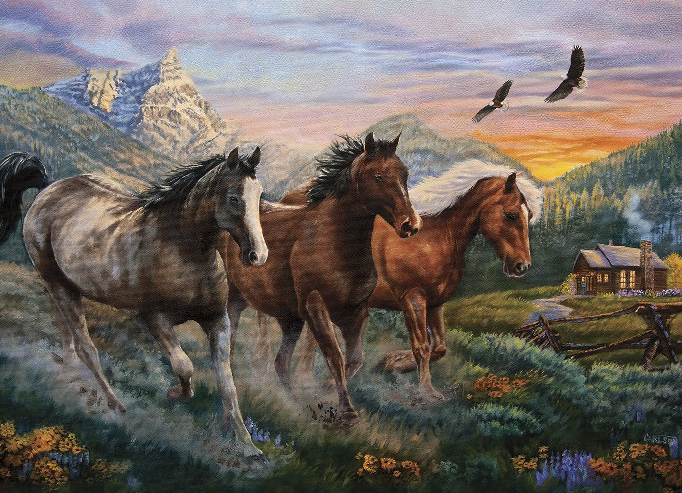 Download High Country Run (Puzzle) PDF