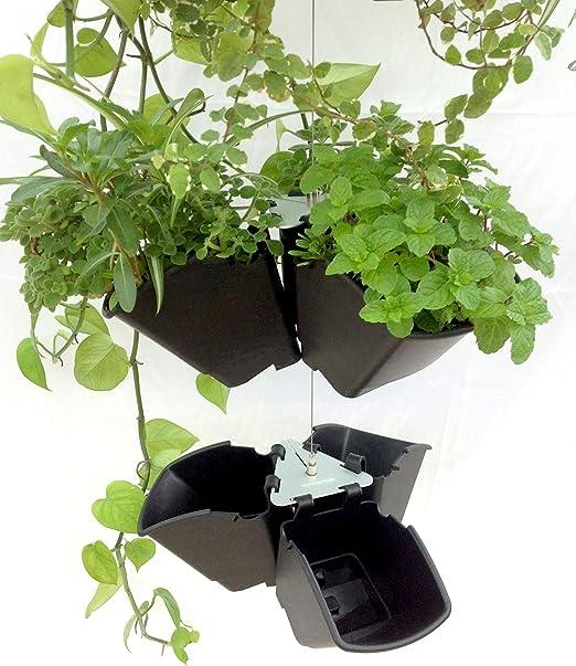 WirePot - Macetas de jardín Verticales suspendidas con Tres macetas, Greenamic: Amazon.es: Jardín