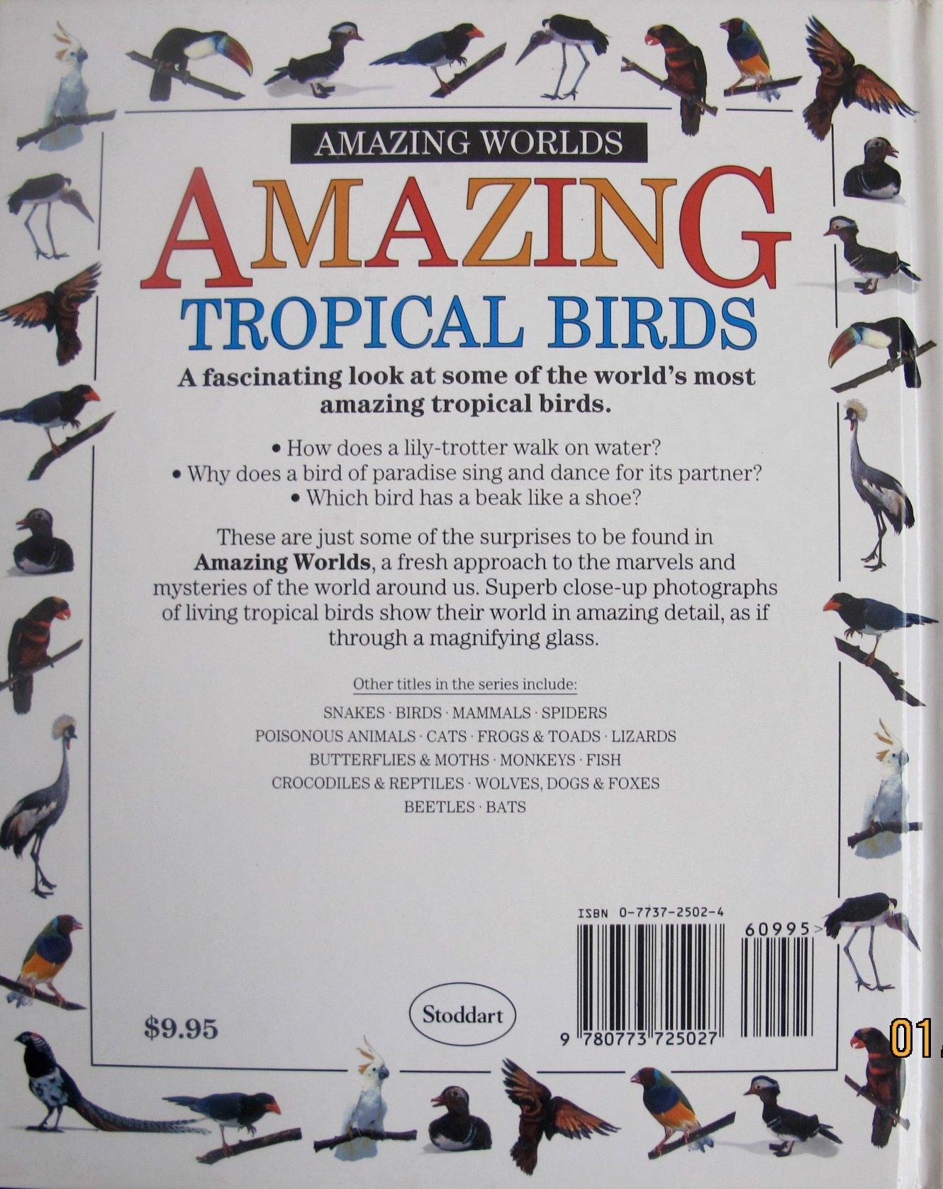 Amazing Worlds: Amazing Tropical Birds: Gerald Legg